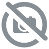 Camera de Chasse GSM SMS 4G